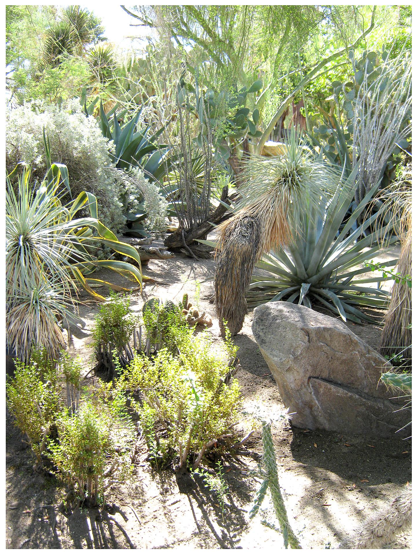 Walking Tour Moorten Botanical Garden Cactarium Rancho Reubidoux