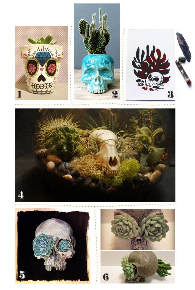 skullsuccs