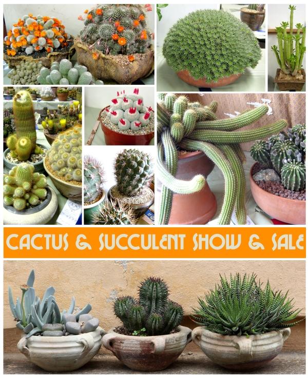 succulentshow